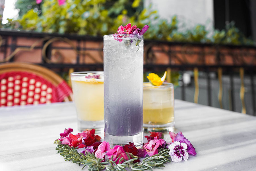Weho Bistro's vibrant cocktails